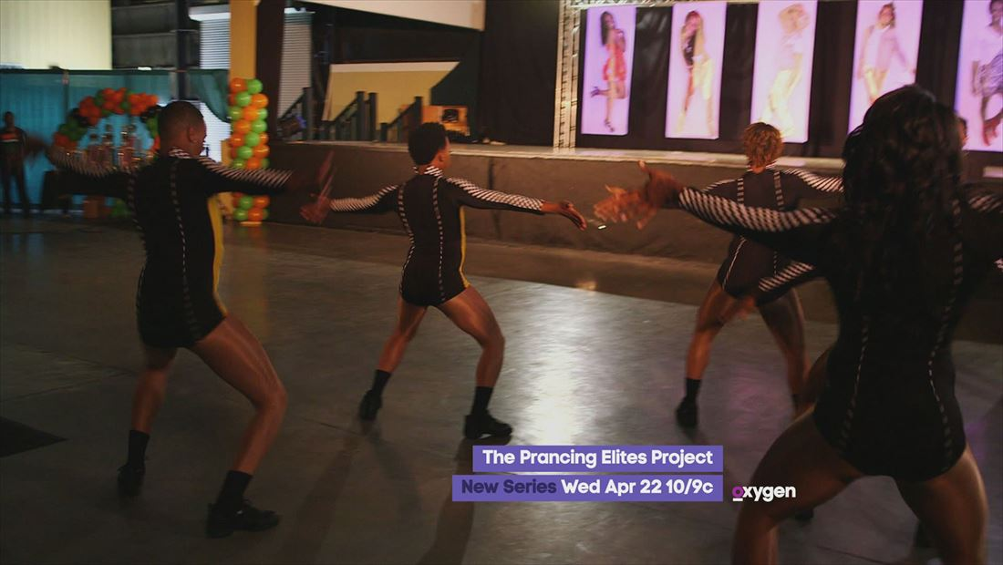 The Prancing Elites Project: A New Series